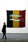 Ghent, Belgium, 09/02/2006.Smak, stedelijk museum van actuele kunst - museum of modern arts.Work of Franky DC.-, ghent, museum, art, smak, modern arts, Franky DC, tricolor, belgian, flag,-..©Christophe Vander Eecken