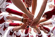 Photography of the 2011 Arkansas Razorback softball team.