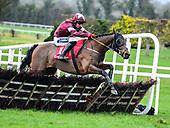 Navan Races - Ladbrokes Boyne Hurdle Day 2020