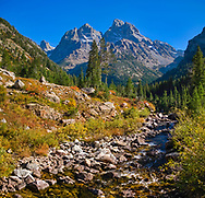Cascade Creek flows through the alpine fall towards the cathedral group and the Grand Teton itself.