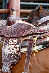 Competitors at RFDTVs The American Semi-Finals rodeo Fort Worth Stockyards National Historic District, Fort Worth, Texas, USA.