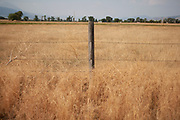 Fence posts with barbed wire marking out land separation on properties in Paradise Valley at Pray, near Livingstone, Montana. The fields are full of golden dried out summer grasses.