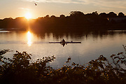 Man sculling in a scenic river at sunrise with reflections in the water