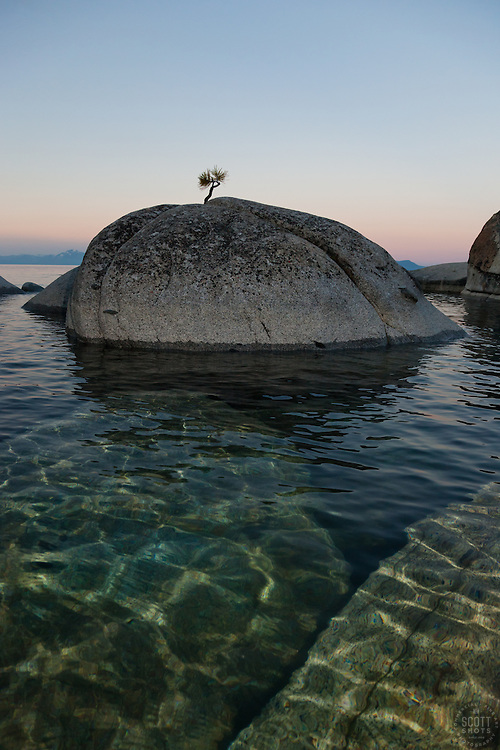 """""""Tahoe Boulders at Sunrise 13"""" - These boulders and bonsai like pine tree were photographed at sunrise near Speedboat Beach, Lake Tahoe. Photographed from a kayak."""