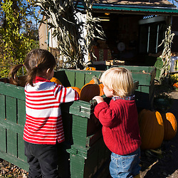 Checking out the pumpkins at the Colby Farm stand in Newburyport, MA. MR