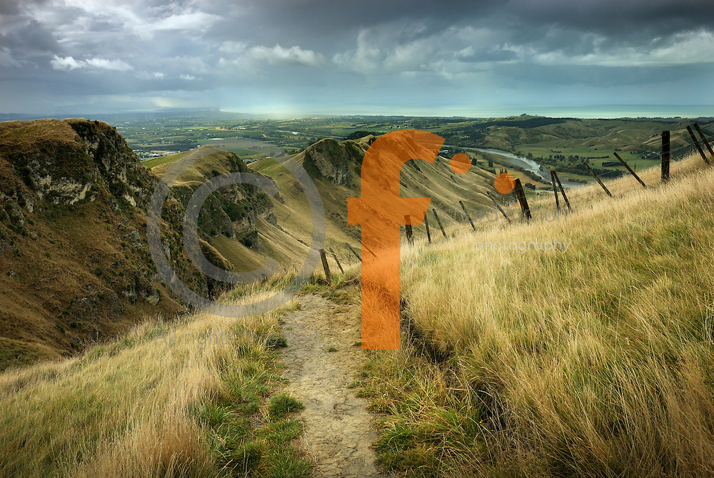 Richard Furhoff 100101_NewZealand_DSC3774_v2.tif.Pathway, TeMata Peak, Looking North East Over Hawkes Bay, New Zealand.