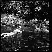 1957 Ruth Kelly and Dog