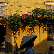 A street scene in Hoi An, Vietnam as a Vietnamese lady walks past a bright yellow wall with hanging summer flowers. Hoi An is an ancient town and an exceptionally well-preserved example of a South-East Asian trading port dating from the 15th century. Hoi An is now a major tourist attraction because of its history. Hoi An, Vietnam. 5th March 2012. Photo Tim Clayton