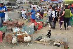 Otovalo Market