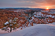 The sun rose over Bryce Canyon for just a minute this morning, but it was a spectacular minute.
