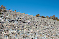 Hikers from the Appalachian Mountain Club on Telescope Peak Trail, Death Valley National Park, California