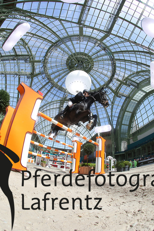 Neilson, Daniel, Zigali P<br /> Paris - Saut Hérmes 2013<br /> © www.sportfotos-lafrentz.de/Stefan Lafrentz
