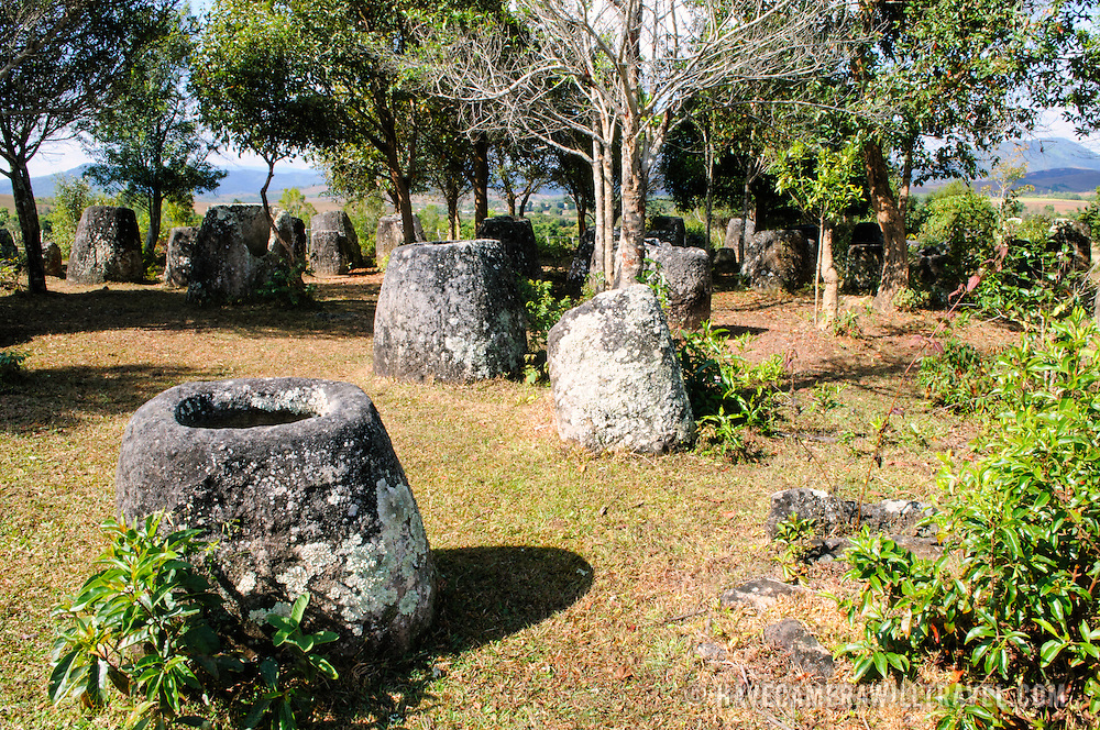 Stone jars under the trees at Site 3 of the Plain of Jars in north-central Laos. Much remains unknown about the age and purpose of the thousands of stone jars clustered in the region. Most accounts date them to at least a couple of thousand years ago and theories have been put forward that they were used in burial rituals.