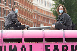 © Licensed to London News Pictures. 03/09/2020. London, UK. Animal Rebellion protesters dump a pink truck outside the Department of health in Victoria St.  The protesters have fixed themselves outside and inside the truck. Photo credit: Ray Tang/LNP