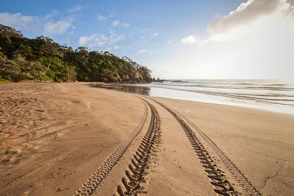 Tyre tracks on Moureeses Bay, East Coast, Far North, NZ.