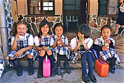 Young Girls At School