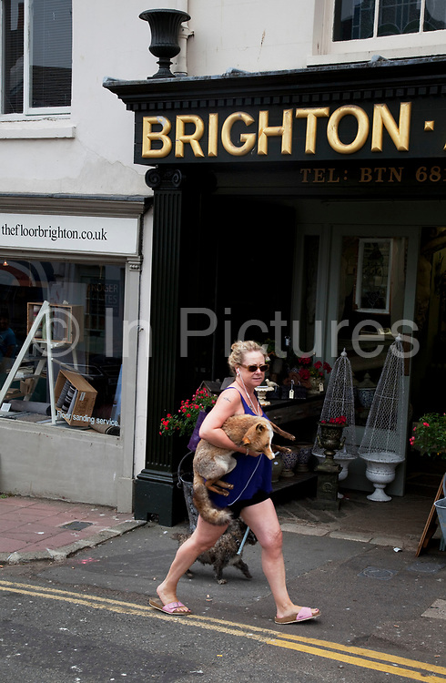 Woman carries a stuffed fox, just bought from a stall on a market street in the North Laines area of Brighton, East Sussex. North Laine—sometimes incorrectly called the North Lanes—is a shopping and residential district of Brighton, on the English  south coast immediately adjacent to the Royal Pavilion. Once a slum area, nowadays with its many pubs and cafés, theatres and museums, it is seen as Brighton's bohemian and cultural quarter.