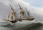 'HMS ''Wild Swan''  Royal Navy Osprey-class sloop, launched 1876, Sold 1920. Chromolithograph 1880.'