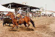 Wilsall Ranch Rodeo, Ranch Horse Competition, Cody Wilsey, Sargent Ranches team, Montana.