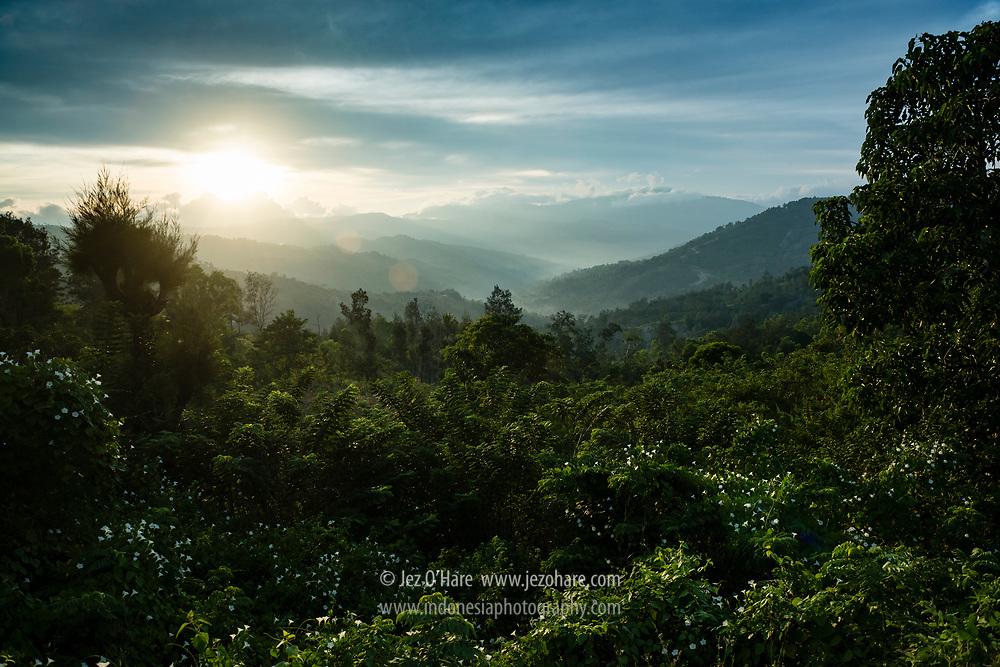 Kerajaan Boti, Kabupaten Timor Tengah Selatan, Pulau Timor, Nusa Tenggara Timur, Indonesia