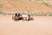 Madagascar, Anosy region, near Tolagnaro (Fort Dauphin) Oxen cart