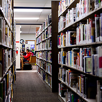 Library patrons read and study at the Octavia Fellin Public Library in Gallup Tuesday.