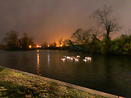 Merrick, New York, USA. December 31, 2018. A raft of ducks sleeps at Cammanns Pond, on south shore of Long Island, during rainy New Year's Eve.