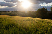 The sun sinks over barley fields and the valley outside Hartest,  valley on 10th July 2020, in Hartest, Suffolk, England.   on 10th July 2020, in Hartest, Suffolk, England. Photo by Richard Baker / In Pictures via Getty Images