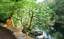 Girl sitting bridge river Scotland picturesque