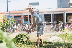 Mature woman working in urban garden, Freiburg im Breisgau, Baden-Wuerttemberg, Germany