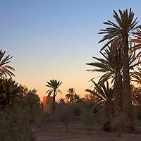 Africa, Morocco, Skoura. Palmery and Kasbah, Skoura.