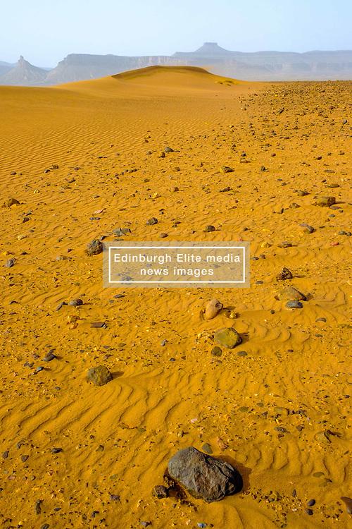 Ripples in the sand in the Moroccan desert near Foum Zguid in the south of Morocco<br /> <br /> (c) Andrew Wilson | Edinburgh Elite media