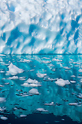 Fragmented ice floats in the reflection of a iceberg, Neko Harbor, Antarctic Peninsula