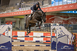 De Bock Valentijn, BEL, Qannando B & V<br /> Pavo Hengsten competitie - Oudsbergen 2021<br /> © Hippo Foto - Dirk Caremans<br />  22/02/2021
