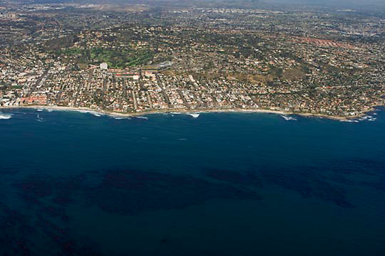 Aerial view of La Jolla, looking east, with a productive kelp forest in the foreground.