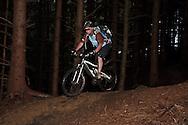 "Mountain biker (Tom Hutton) descending through dark woodland section of ""Bottoms"" on ""The 8"" red track, Gisburn Forest, Lancs"