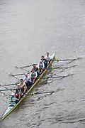 Putney, London, Varsity,   3rd April 2019, CUBC pass under Hammersmith Bridge using a bow side Tandem rig,  between 6-7, Oxford/Cambridge Media week, Championship Course,<br /> [Mandatory Credit: Karon PHILLIPS], Wednesday,  03/04/2019, <br /> <br /> Crew: Dave BELL, James CRACKNELL, Grant BITLER, Dara ALIZADEH, Cullum SULLIVAN, Sam HOOKWAY, Freddie DAVIDSON, Natan WEGRZYCHI-SZYMCZYK, Cox, Matthew HOLLAND
