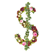 US Dollar Symbol Part of a set of letters, Numbers and symbols of the Alphabet made with flowers, branches and leaves on white background