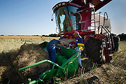 Jake Banister (left) and Reuben Taylor (right) work to repair a broken header on a combine.  The header was damaged navigating terraces on a canola field near El Reno, Oklahoma.  Custom harvesters are able to use much of their wheat harvesting equipment for canola harvesting.