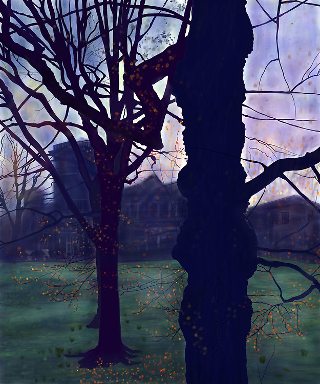 Drawing of a large tree with a few fall leaves left at early morning in Prospect Park.