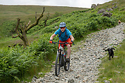 A male mountain biker, with two dogs, cycling down a rocky footpath called Hodgson Brow on the 13th June 2019 near Kentmere in the Lake District in the United Kingdom.