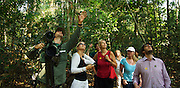 Birdwatching excursion, Khao Yai, Thailand