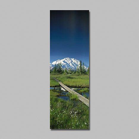 Alaska. Denali NP. McKinley (20,320') Riverbar hiking trail.