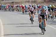 Peter Sagan (SVK - Bora - Hansgrohe) during the UCI World Tour, Tour of Spain (Vuelta) 2018, Stage 6, Huercal Overa - San Javier Mar Menor 155,7 km in Spain, on August 30th, 2018 - Photo Luis Angel Gomez / BettiniPhoto / ProSportsImages / DPPI