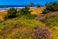Meyers Creek Beach on the Oregon coast, USA.