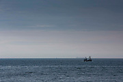 A British fishing boat followed by seagulls out in the English Channel trawling for fish in the English Channel, United Kingdom.