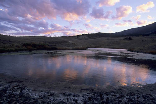 Yellowstone National Park, Near the city of Gardiner, Montana.