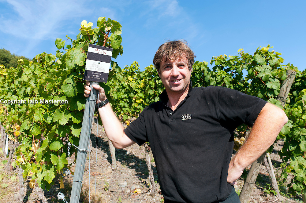Herr Hain the winemaker standing beside his vineyard of Riesling grapes at harvest time near Piesport in the Mosel Valley in Germany