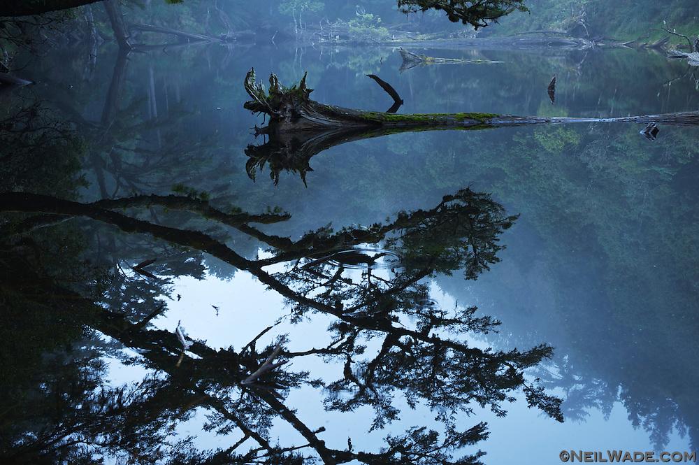 Reflections on The Secret Lake near Jialuo Hu ???, Taiwan.