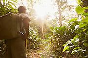 Man on footpath, Odzala-Kokoua National Park.